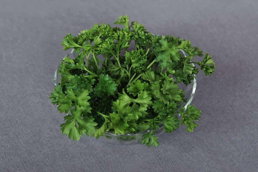 Parsley in a bowl